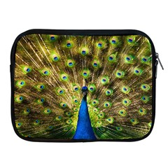 Peacock Bird Apple iPad 2/3/4 Zipper Cases