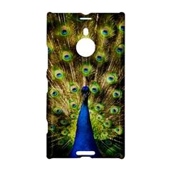 Peacock Bird Nokia Lumia 1520