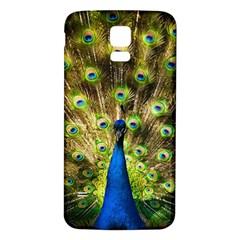 Peacock Bird Samsung Galaxy S5 Back Case (White)