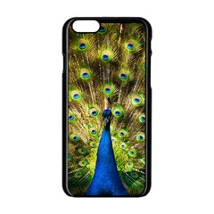Peacock Bird Apple iPhone 6/6S Black Enamel Case