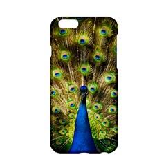 Peacock Bird Apple iPhone 6/6S Hardshell Case
