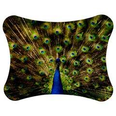 Peacock Bird Jigsaw Puzzle Photo Stand (bow)