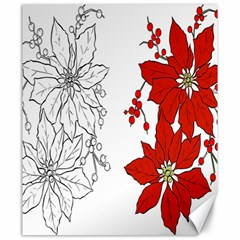 Poinsettia Flower Coloring Page Canvas 20  X 24