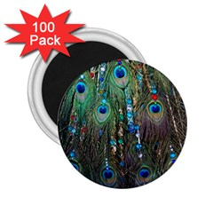 Peacock Jewelery 2.25  Magnets (100 pack)