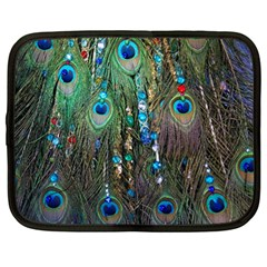 Peacock Jewelery Netbook Case (Large)