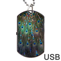 Peacock Jewelery Dog Tag Usb Flash (one Side)