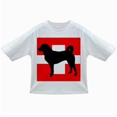 Appenzeller Sennenhund Silo Switzerland Flag Infant/Toddler T-Shirts