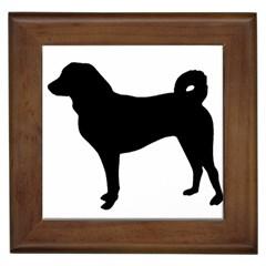 Appenzeller Sennenhund Silo Framed Tiles