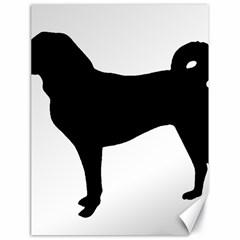 Appenzeller Sennenhund Silo Canvas 18  x 24