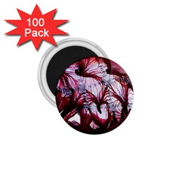 Jellyfish Ballet Wind 1.75  Magnets (100 pack)