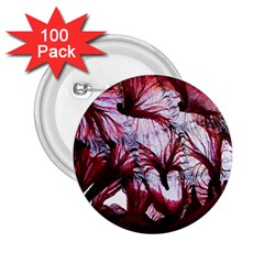 Jellyfish Ballet Wind 2.25  Buttons (100 pack)