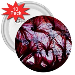 Jellyfish Ballet Wind 3  Buttons (10 Pack)