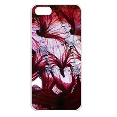Jellyfish Ballet Wind Apple iPhone 5 Seamless Case (White)