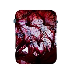 Jellyfish Ballet Wind Apple iPad 2/3/4 Protective Soft Cases