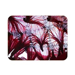 Jellyfish Ballet Wind Double Sided Flano Blanket (Mini)