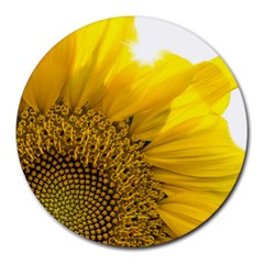 Plant Nature Leaf Flower Season Round Mousepads