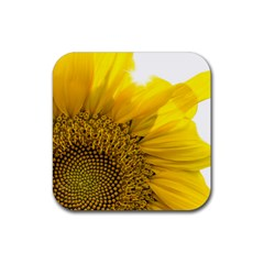 Plant Nature Leaf Flower Season Rubber Square Coaster (4 Pack)