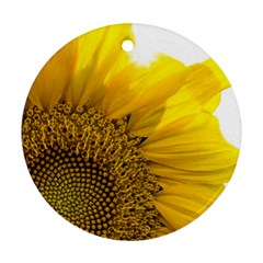 Plant Nature Leaf Flower Season Round Ornament (Two Sides)