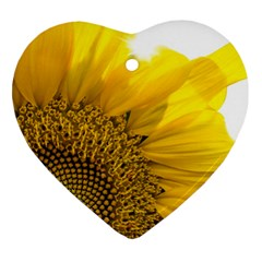 Plant Nature Leaf Flower Season Heart Ornament (two Sides)