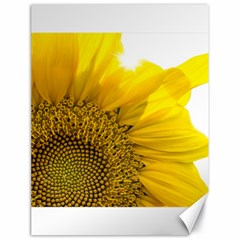 Plant Nature Leaf Flower Season Canvas 18  x 24