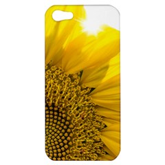 Plant Nature Leaf Flower Season Apple iPhone 5 Hardshell Case