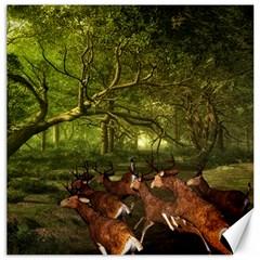 Red Deer Deer Roe Deer Antler Canvas 20  X 20
