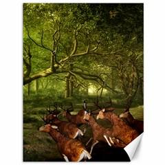 Red Deer Deer Roe Deer Antler Canvas 36  X 48