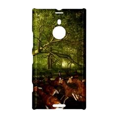 Red Deer Deer Roe Deer Antler Nokia Lumia 1520