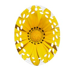 Transparent Flower Summer Yellow Oval Filigree Ornament (two Sides)