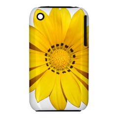 Transparent Flower Summer Yellow iPhone 3S/3GS