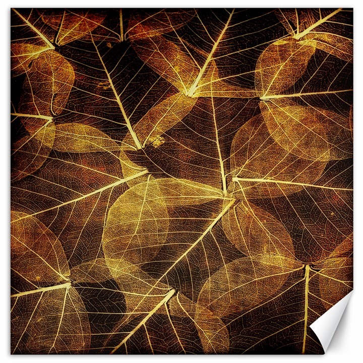 Leaves Autumn Texture Brown Canvas 16  x 16