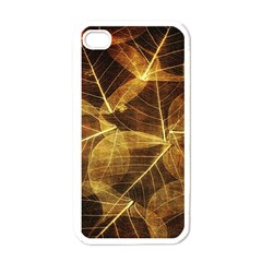 Leaves Autumn Texture Brown Apple iPhone 4 Case (White)