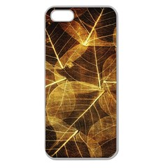 Leaves Autumn Texture Brown Apple Seamless iPhone 5 Case (Clear)