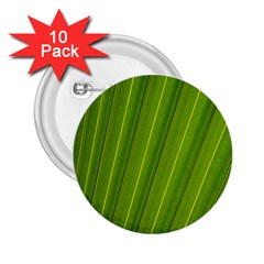 Green Leaf Pattern Plant 2.25  Buttons (10 pack)