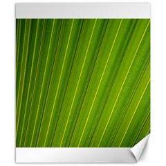 Green Leaf Pattern Plant Canvas 8  x 10