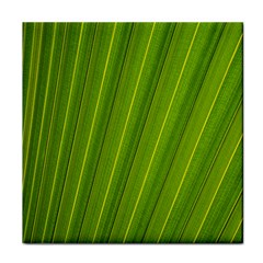 Green Leaf Pattern Plant Face Towel