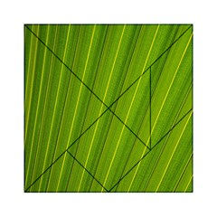 Green Leaf Pattern Plant Acrylic Tangram Puzzle (6  x 6 )