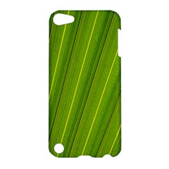 Green Leaf Pattern Plant Apple iPod Touch 5 Hardshell Case