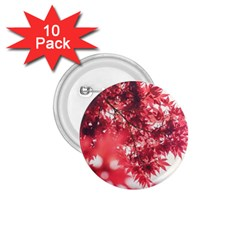 Maple Leaves Red Autumn Fall 1.75  Buttons (10 pack)