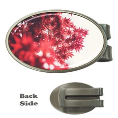 Maple Leaves Red Autumn Fall Money Clips (Oval)