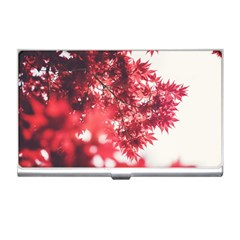 Maple Leaves Red Autumn Fall Business Card Holders