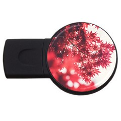 Maple Leaves Red Autumn Fall USB Flash Drive Round (2 GB)