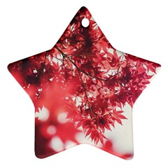 Maple Leaves Red Autumn Fall Star Ornament (Two Sides)