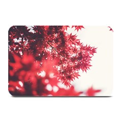 Maple Leaves Red Autumn Fall Plate Mats