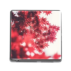Maple Leaves Red Autumn Fall Memory Card Reader (square)