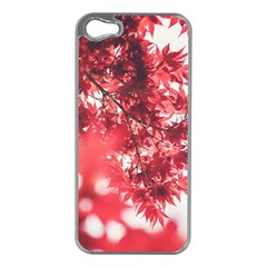 Maple Leaves Red Autumn Fall Apple iPhone 5 Case (Silver)