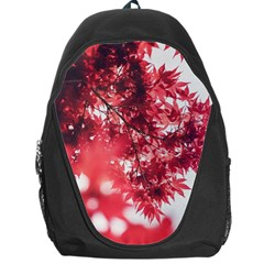 Maple Leaves Red Autumn Fall Backpack Bag