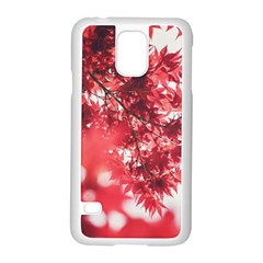 Maple Leaves Red Autumn Fall Samsung Galaxy S5 Case (White)