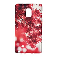 Maple Leaves Red Autumn Fall Galaxy Note Edge