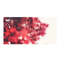 Maple Leaves Red Autumn Fall Satin Wrap